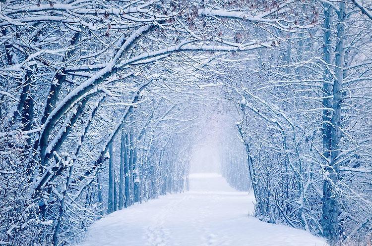 inviernos-en-el-mundo-1