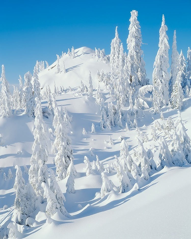 inviernos-en-el-mundo-13