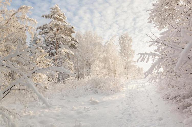 inviernos-en-el-mundo-17