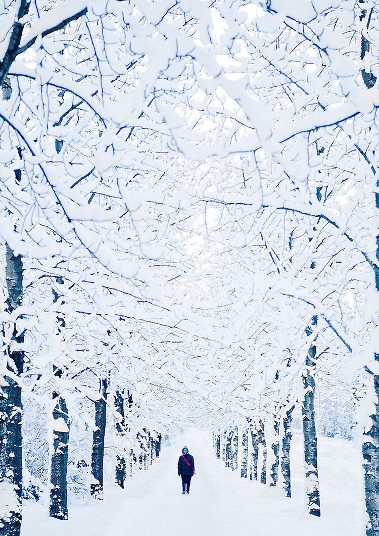 inviernos-en-el-mundo-19
