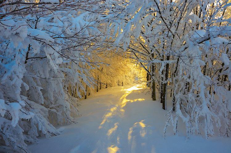 inviernos-en-el-mundo-5