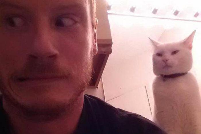 mascotas-planeando-matarle-11