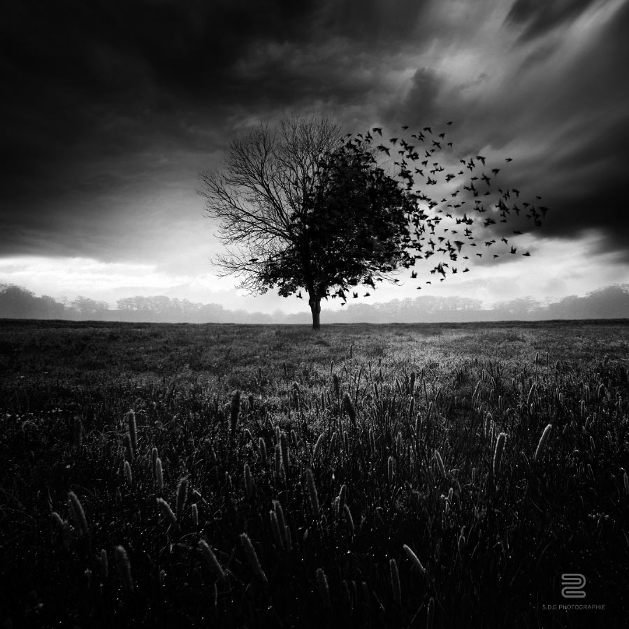 photoshop-arte-digital-31