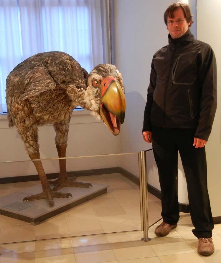 10 Terroríficas Criaturas Prehistóricas (Que No Eran Dinosaurios)