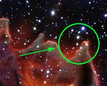"Hermosa Nueva Foto De La Misteriosa Nebulosa ""Fauces De La Bestia"""