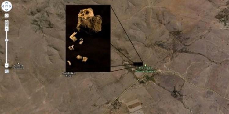 Antiguo ancestro humano, África del Sur