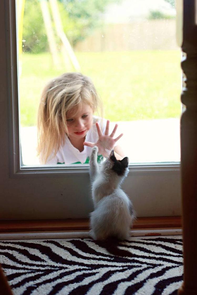 24 Niños A los Que Se Les Olvidó Por Completo Que No Son Animales. ¡Atención al #7!