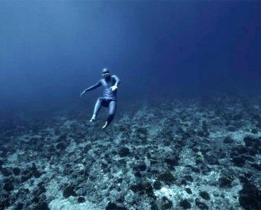 El Espectacular Vídeo Del Buceador Que Parece Que Vuela En el Océano 1