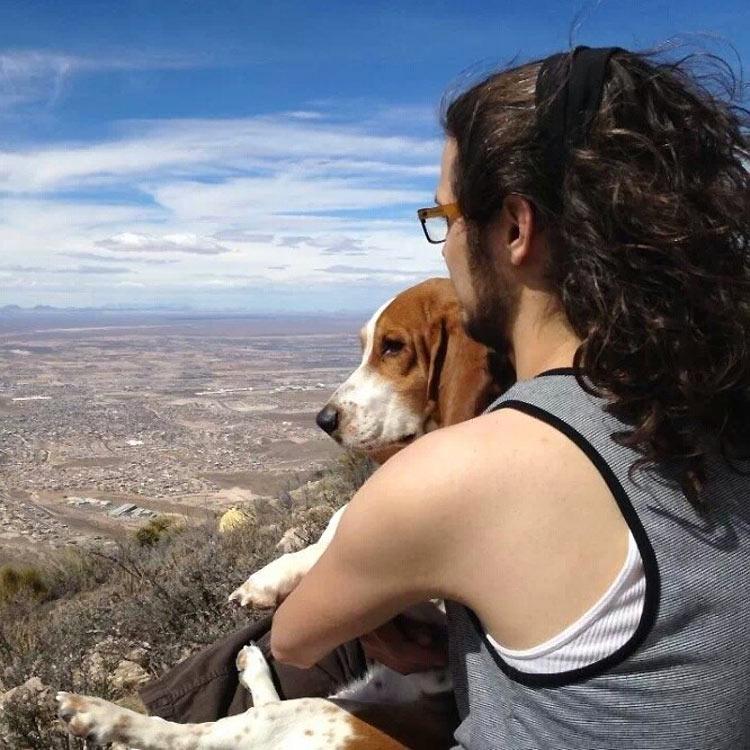 perros-llevados-duenos-13