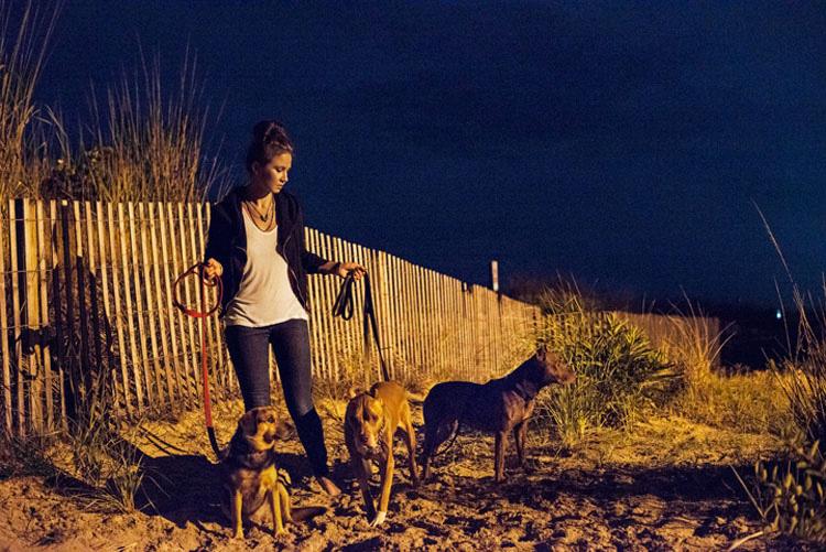 Antes De La Muerte De Este Perro Esta Familia Le Dieron Las Vacaciones De Su Vida