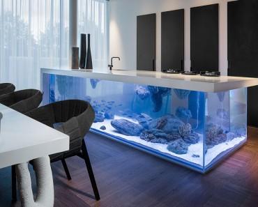 acuario-cocina-destacada