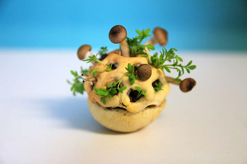 Llegan Los Alimentos Vivos Que Crecen Antes De Comerlos