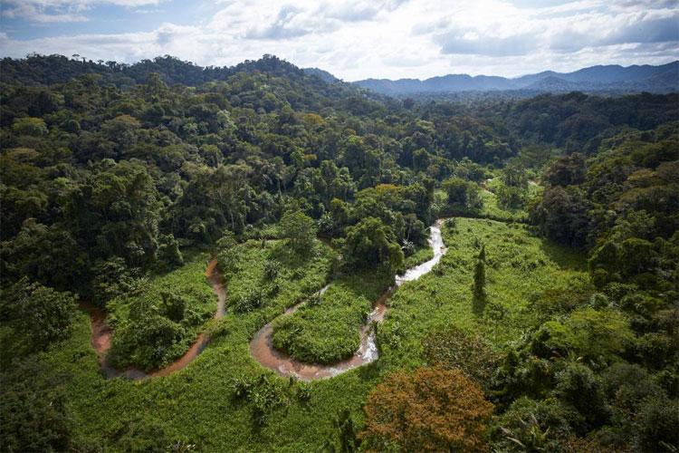 """Exclusiva: Tras 500 Años De Búsqueda Se Ha Encontrado La """"Ciudad Del Dios Mono"""" En Honduras"""