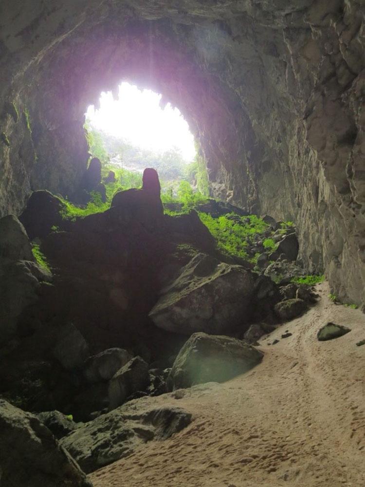 La Cueva Más Grande Del Mundo Tiene Su Propio Río, Selva Y Clima. ¡INCREÍBLES Imágenes! 8