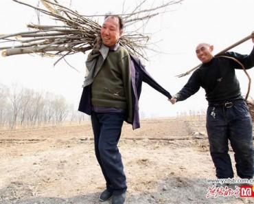 Esta historia EMOTIVA te emocionará: un ciego y su amigo sin brazos plantan más de 10.000 árboles en China 1