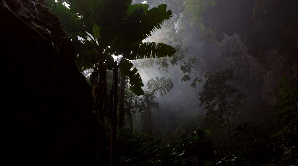 Asombrosas imágenes de la cueva más grande del mundo que parecen salir de la película Avatar