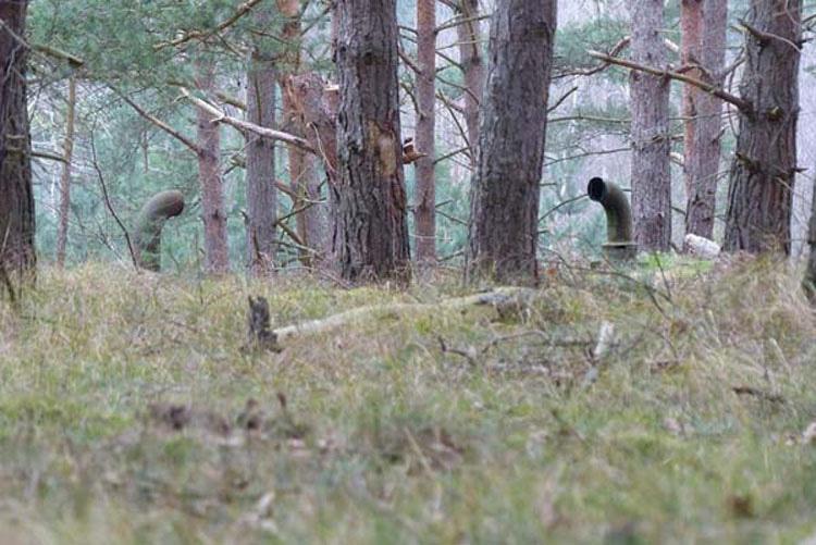 Nos Encontramos Con Esto En El Bosque... Debajo Había Un Secreto Terriblemente Impresionante