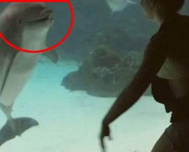 Ella ha descubierto una manera única de comunicarse con los delfines... ¡Y LES ENCANTA!