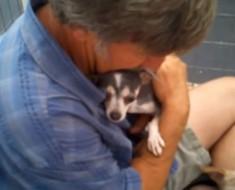 Esta perrita vivía en una jaula y nunca había sentido el contacto humano hasta ESTE momento