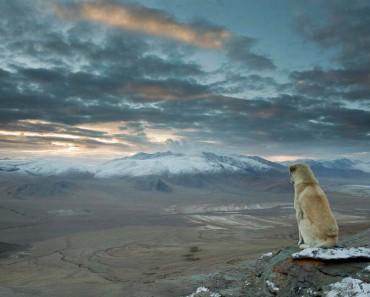 Hasta que no veas las 37 vistas más impresionantes de la Tierra no habrás vivido plenamente 3