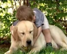 El vídeo de la amistad de un niño y su perro que te llegará al corazón y te emocionará