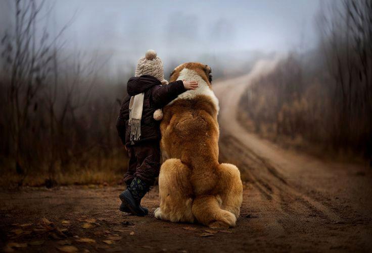 El poema sobre perros más bonito que jamás hayas leído