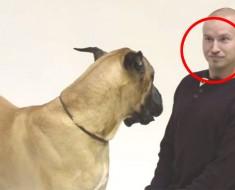 Un actor se pone a LADRAR a estos perros, ahora MIRA cómo son las reacciones de ellos