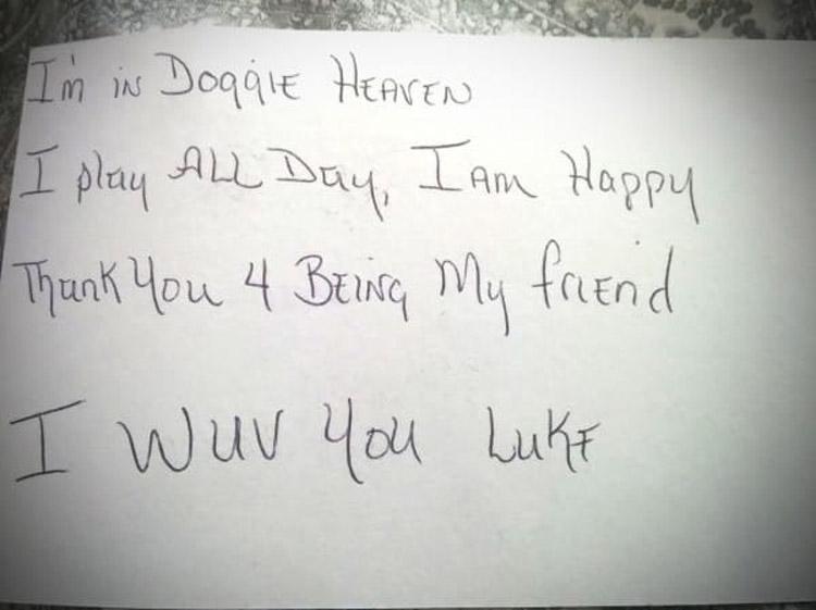 Este niño de 3 años escribió esta carta a su perro muerto y tuvo ESTA conmovedora respuesta