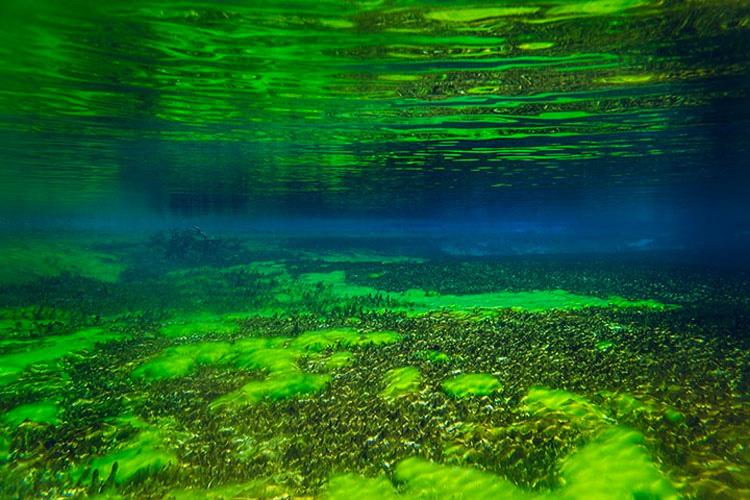 Este lago es el ÚNICO de su tipo en todo el mundo. Es difícil de creer que sea REAL 9