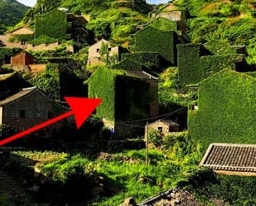 Esto hace la naturaleza en un pueblo cuando las personas lo ABANDONAN durante años