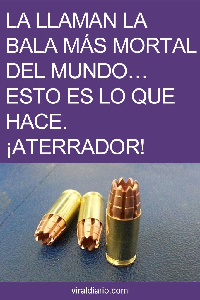 La llaman la bala más mortal del mundo... ESTO es lo que hace. ¡ATERRADOR!