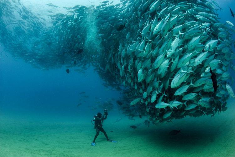 16 fotos fuera de este mundo. ¿Preparado para sorprenderte?