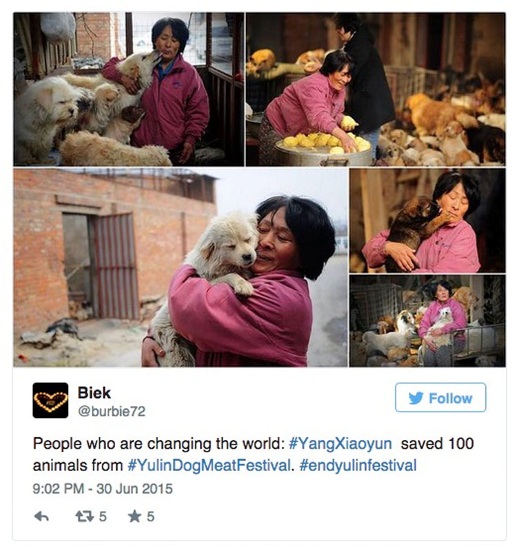 Esta asombrosa mujer ha gastado una fortuna para salvar a 800 Perros del festival de carne de perro de Yulin