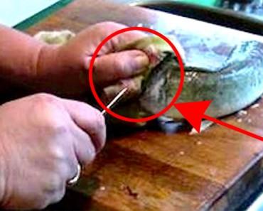 Ella prepara el pescado para la cena, ¿pero cuando su marido filma esto? ¡IMPACTANTE!
