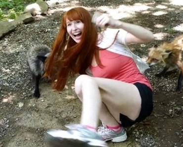 Cuando encontraron esta villa de zorros, no tenían ni idea de que era el lugar más feliz de la Tierra