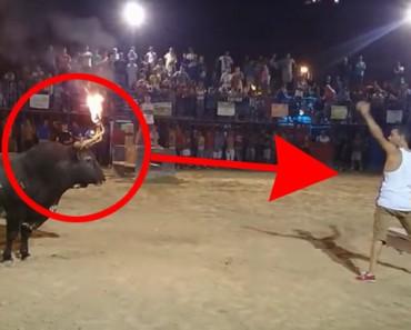 IMÁGENES DURAS: Esto es lo que pasa cuando se juega con un toro al que se tortura con fuego