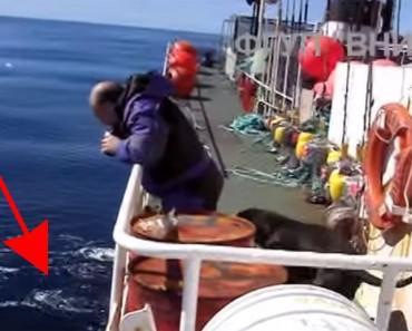 Una tripulación rusa se encuentra con una ENORME criatura del mar. Te sorprenderás cuando veas lo que es