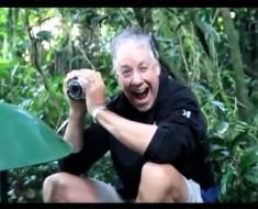 Un hombre va en busca de gorilas salvajes, pero nunca esperaba que ocurriera ESTO
