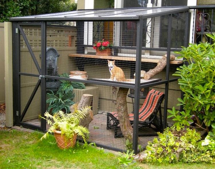 Desde la distancia esto parece un patio normal, pero NO ES lo piensas...