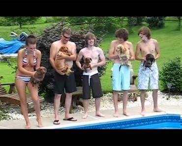 Estos 5 adolescentes tienen a sus perros listos para una carrera épica. ¿Qué es lo que OCURRE después?