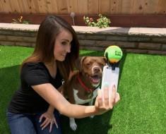 selfies-con-tu-perro-1