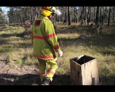 Un bombero ve una caja en el bosque. Lo que encuentra en el interior cambia su vida para siempre