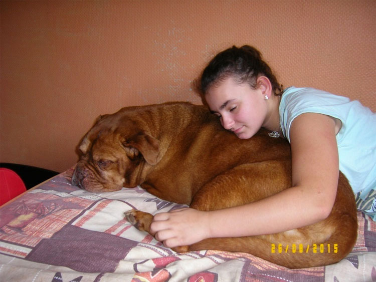 ¿Recuerdas a la perra que fue enterrada viva? Mira lo feliz que es con su nueva familia