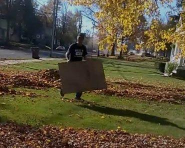 Lo que hace con un cartón hará que tires tu rastrillo a la basura. ¡Genial!
