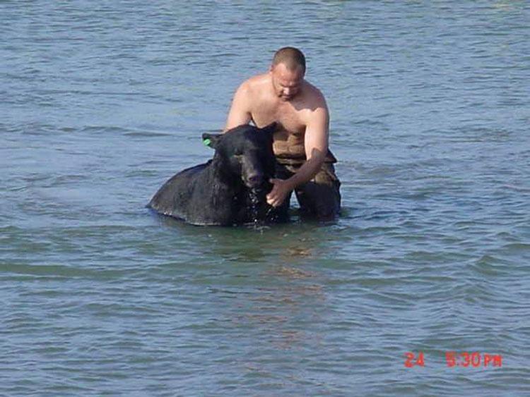 Este hombre saltó al agua para salvar del ahogamiento a un oso de 180 kilos