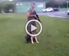 El soldado está absolutamente inmóvil. ATENCIÓN al perro cuando él comienza a moverse