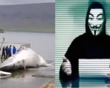 Este país mata ballenas, así que estos hackers cierran sus sitios web