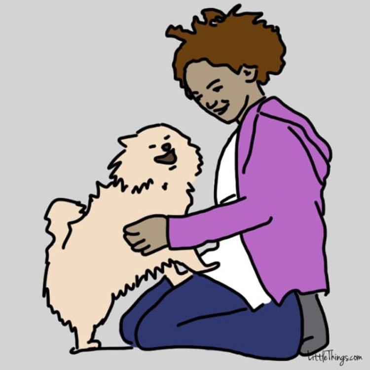 8 cosas que puedes hacer para que tu perro sea FELIZ