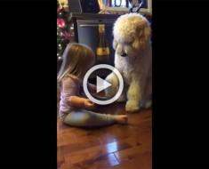 Este papá sorprendió a su hija enseñando un truco al perro de la familia. Verlos juntos es adorable