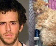 Policías registran la mochila de éste hombre, y encuentran un gato moribundo envuelto en cinta